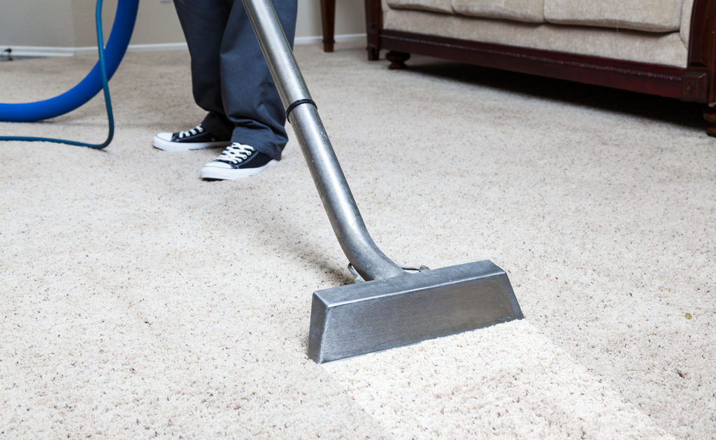 Image result for carpet cleaning services
