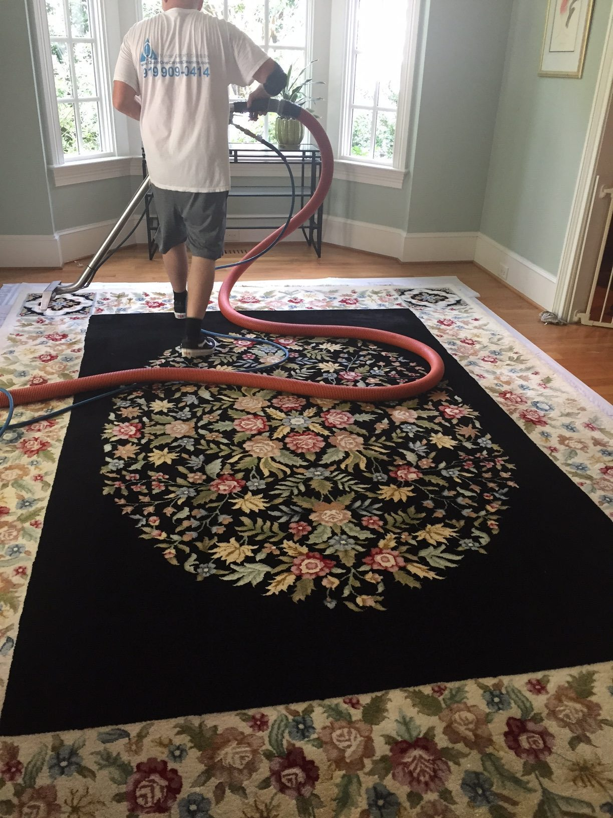 Carpet Cleaning Apex Nc Images In Mn